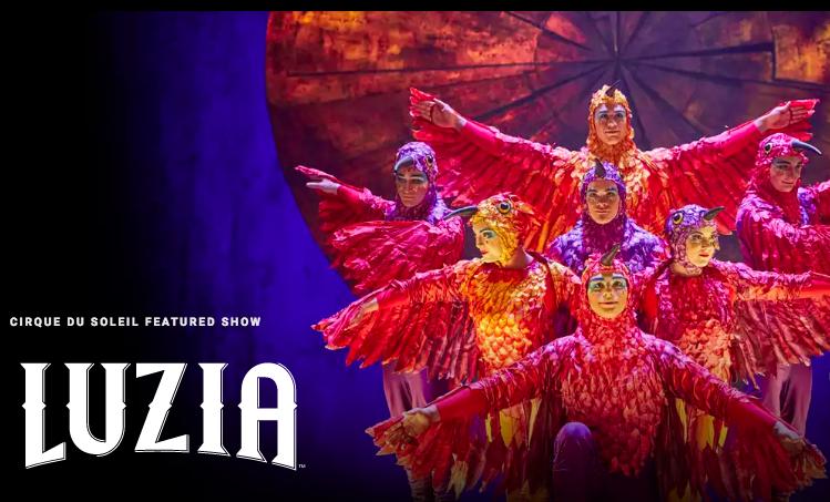 Luzia Cirque Du Soleil