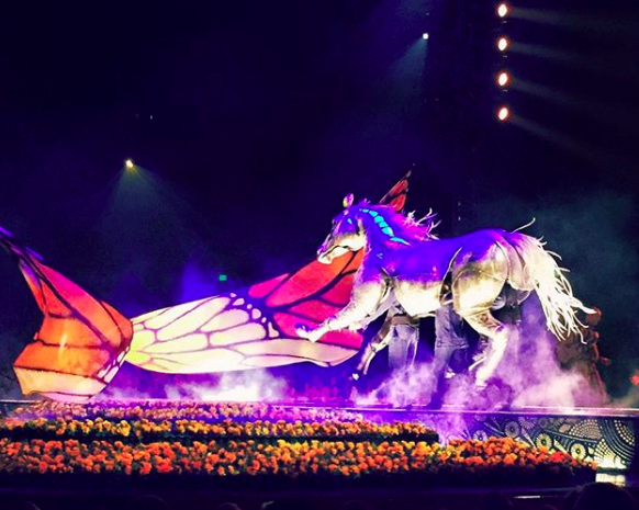 Butterfly wings and a horse at the Cirque Du Soleil Mexico